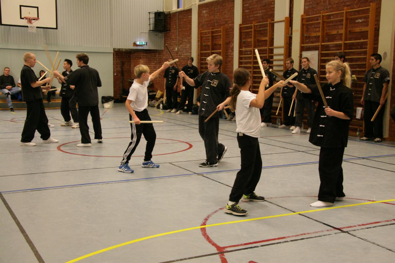 Kung fu, kampsport, träning, skövde, barn, ungdom
