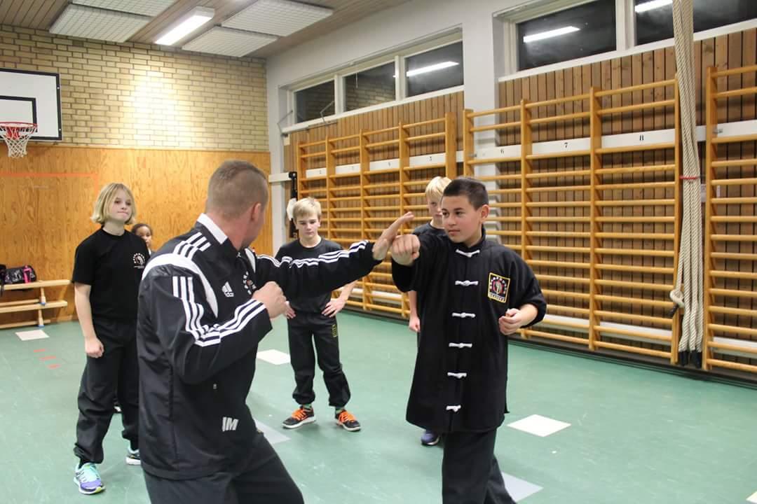 kampsport, kung fu, träning, skövde