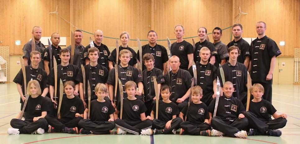Kampsport, kung fu, gruppbild, träning