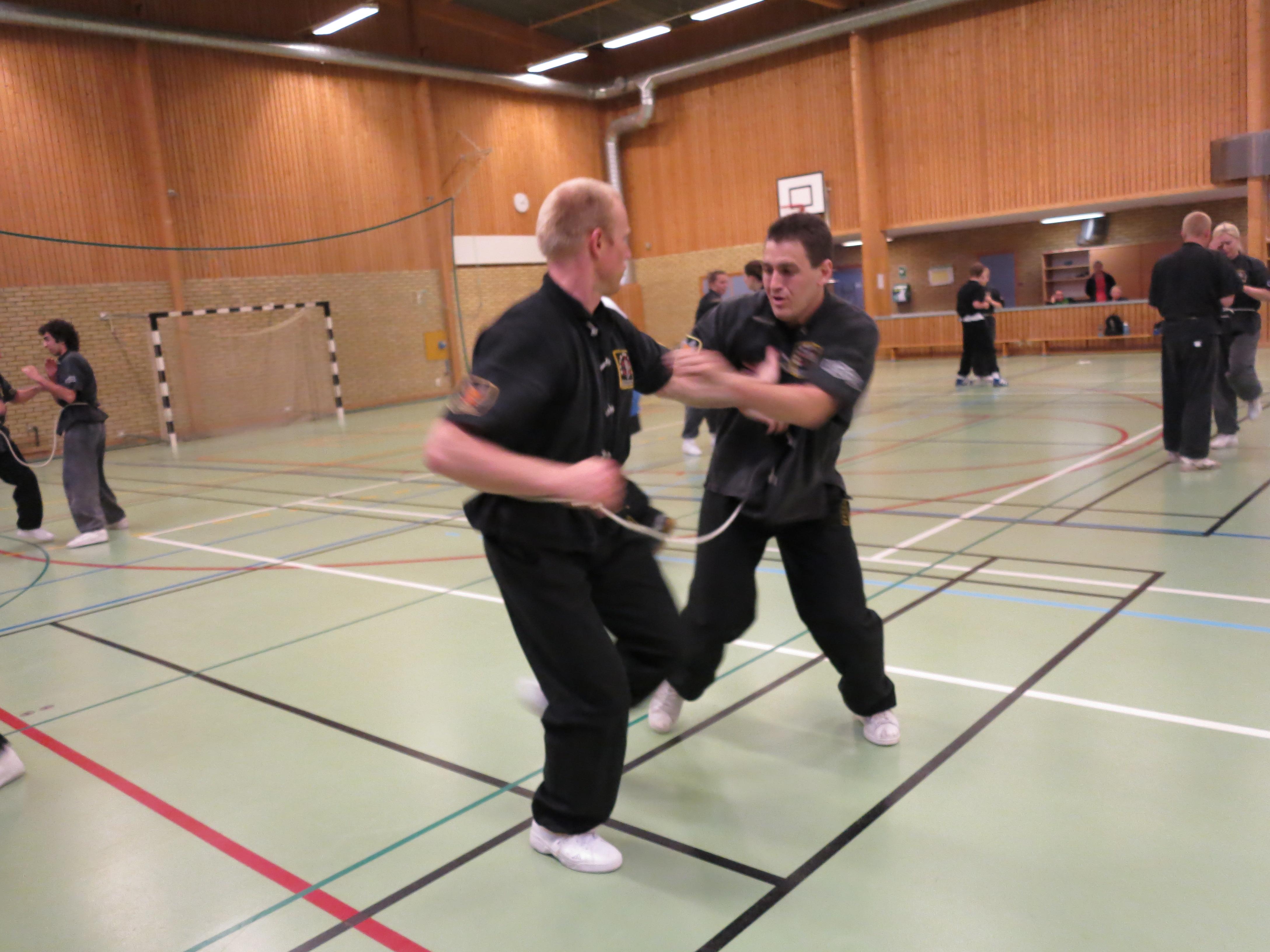 Kung fu, kampsport, träning, skövde