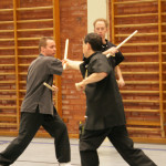 kampsport, O Shin Chuen kung fu, helgkurs skövde
