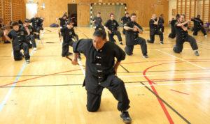 Da Sifu Louis Linn undervisar Tsoan-tje-kun (tvådelad käpp).